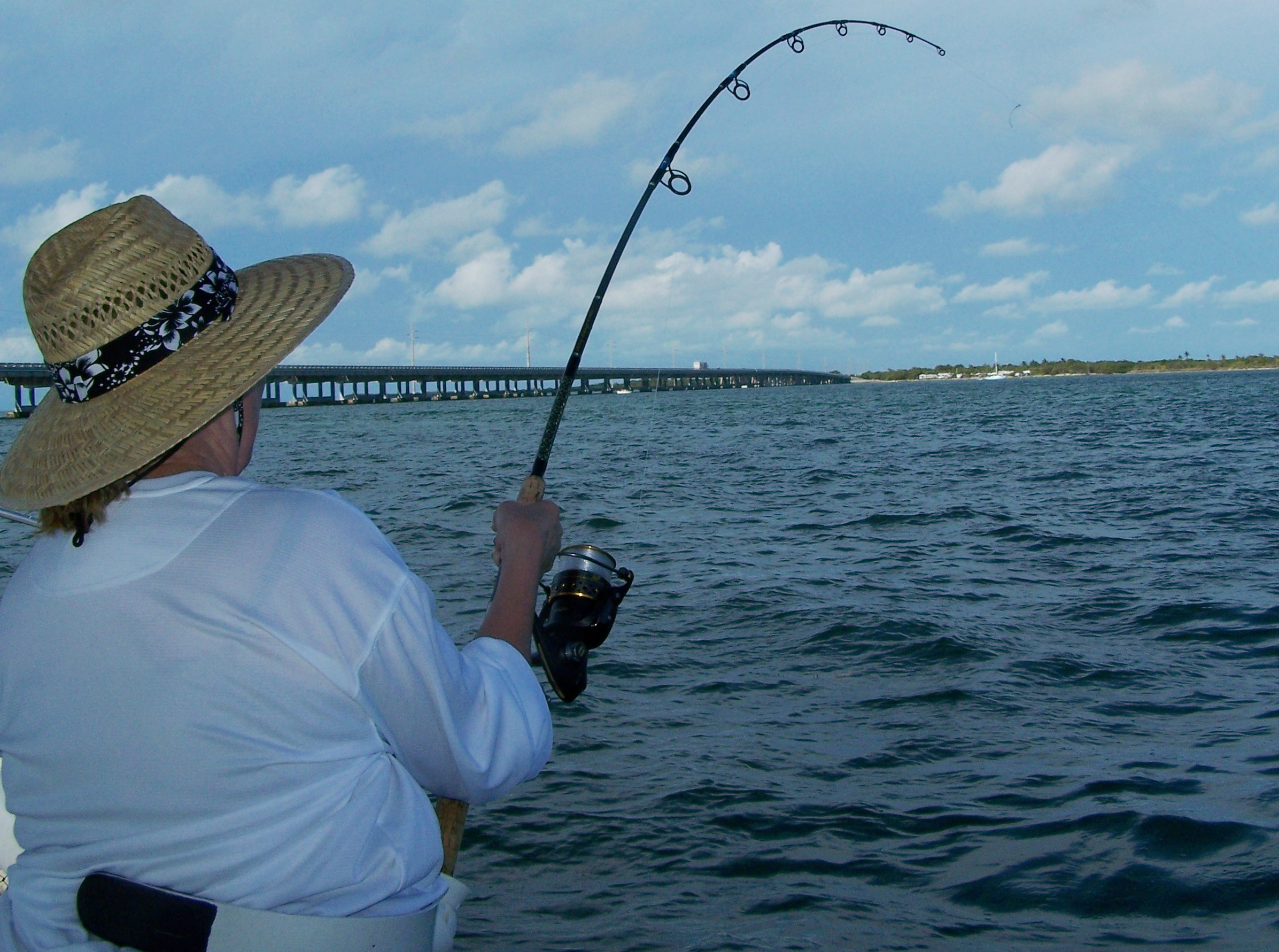 Pictures of tarpon fishing in marathon and the middle for Florida tarpon fishing